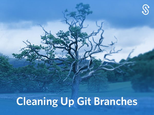 Cleaning Up Git Branches