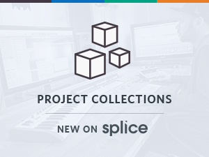 Project Collections - New On Splice