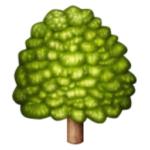deciduous tree emoji serum