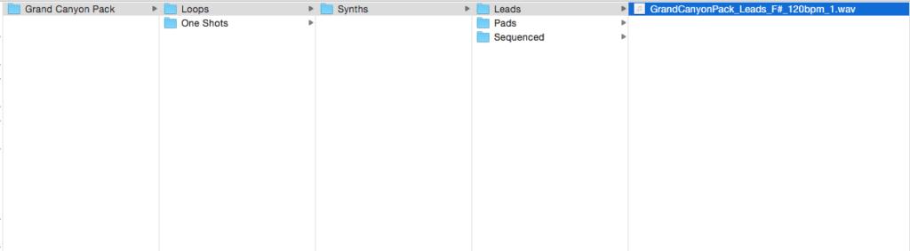 sample-pack-folder-structure-loops