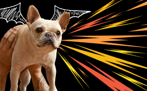 dragon-roar-dog-bark-featured-image