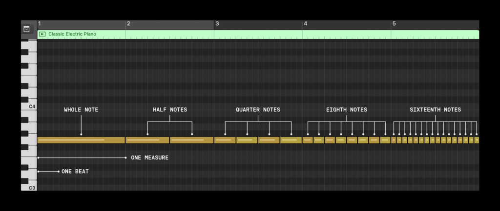 The length of different notes, demonstrated on the piano roll
